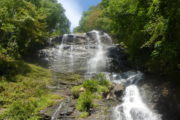Happy Tails Tours in Amicalola Falls Waterfalls