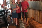 Wine and beer tasting with dogs