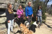 Happy Tails Tours offers personalized service