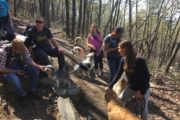 Happy Tails Tours with Keendog