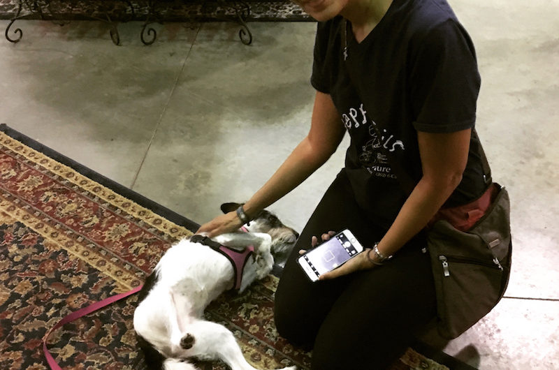 Claudia Blank playing with dog