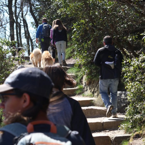 Hiking tours at Yadkin Valley and Pilot Mountain