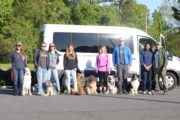 The successful launch of Happy Tails Tours