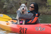 great places to take your dogs on vacation
