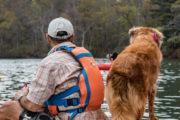 best dog tours in Charlotte North Carolina