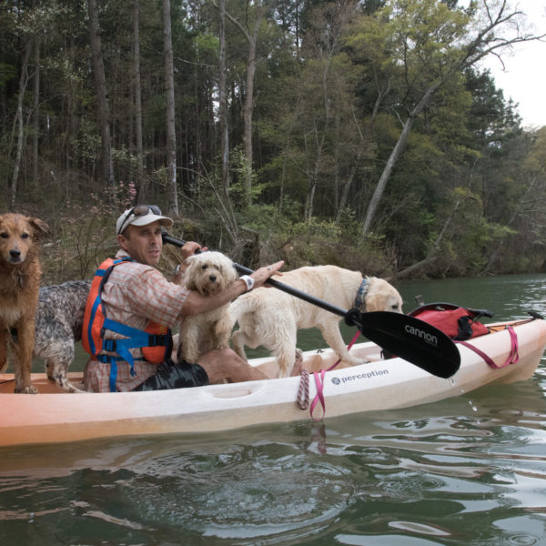 David Blank kayaking with dogs