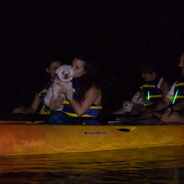 Happy Tails Tours group kayaking tour 2
