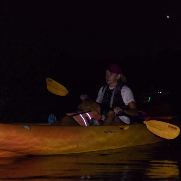 Happy Tails Tours kayaking tours 2