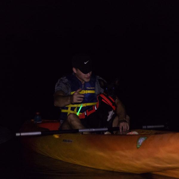 Happy Tails Tours kayaking tours 3