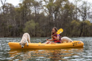 kayaking and SUP adventure with dogs