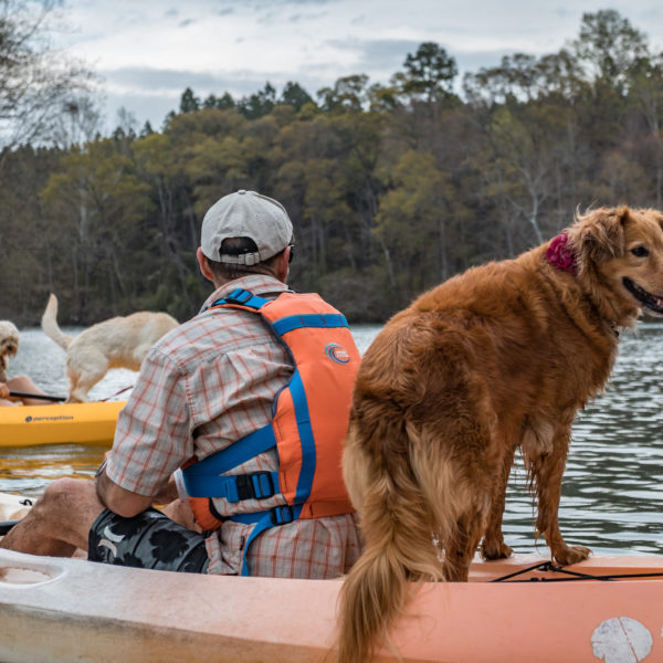 best dog travel kayaking tours