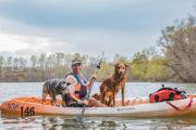 best dog travel outdoor tours