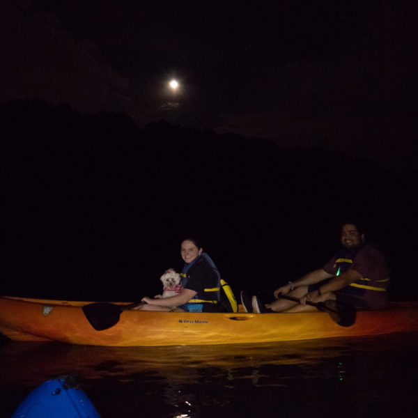 Happy Tails Tours kayaking with dogs under the full moon