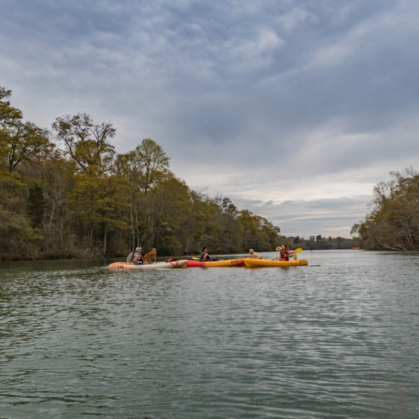Howl at the moon kayaking and SUP tour