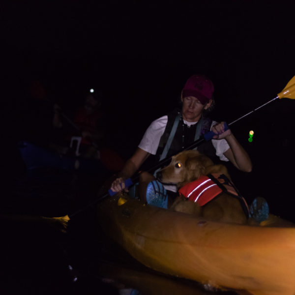 Happy Tails tours kayaking with dogs 2