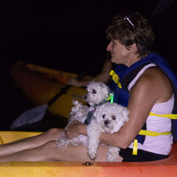 Howl at the moon kayaking tours with dogs