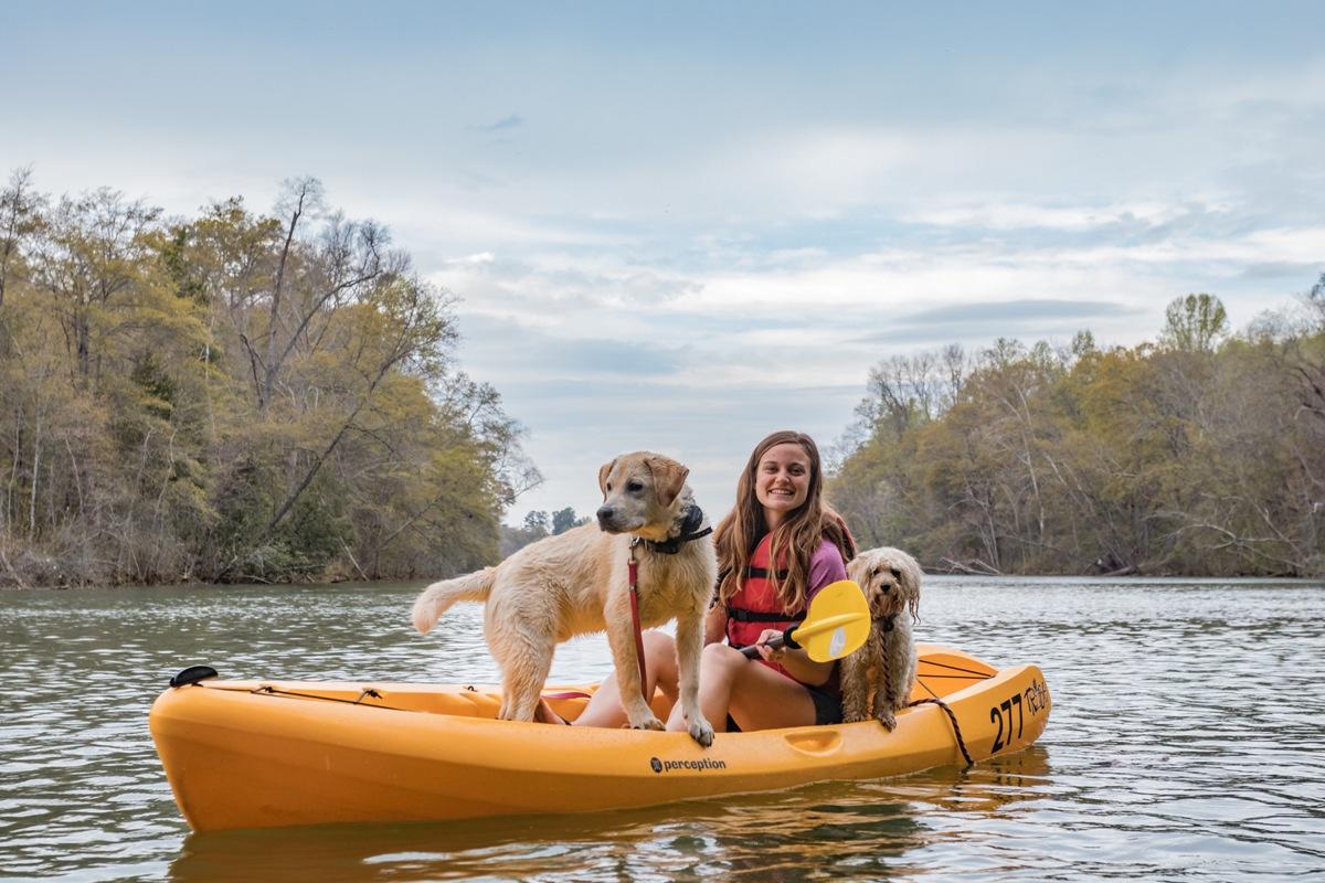 Dogs at the lake kayaking