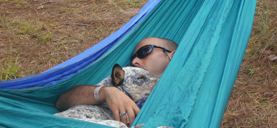 David and Dozer sleepig in Hammock while traveling with dogs