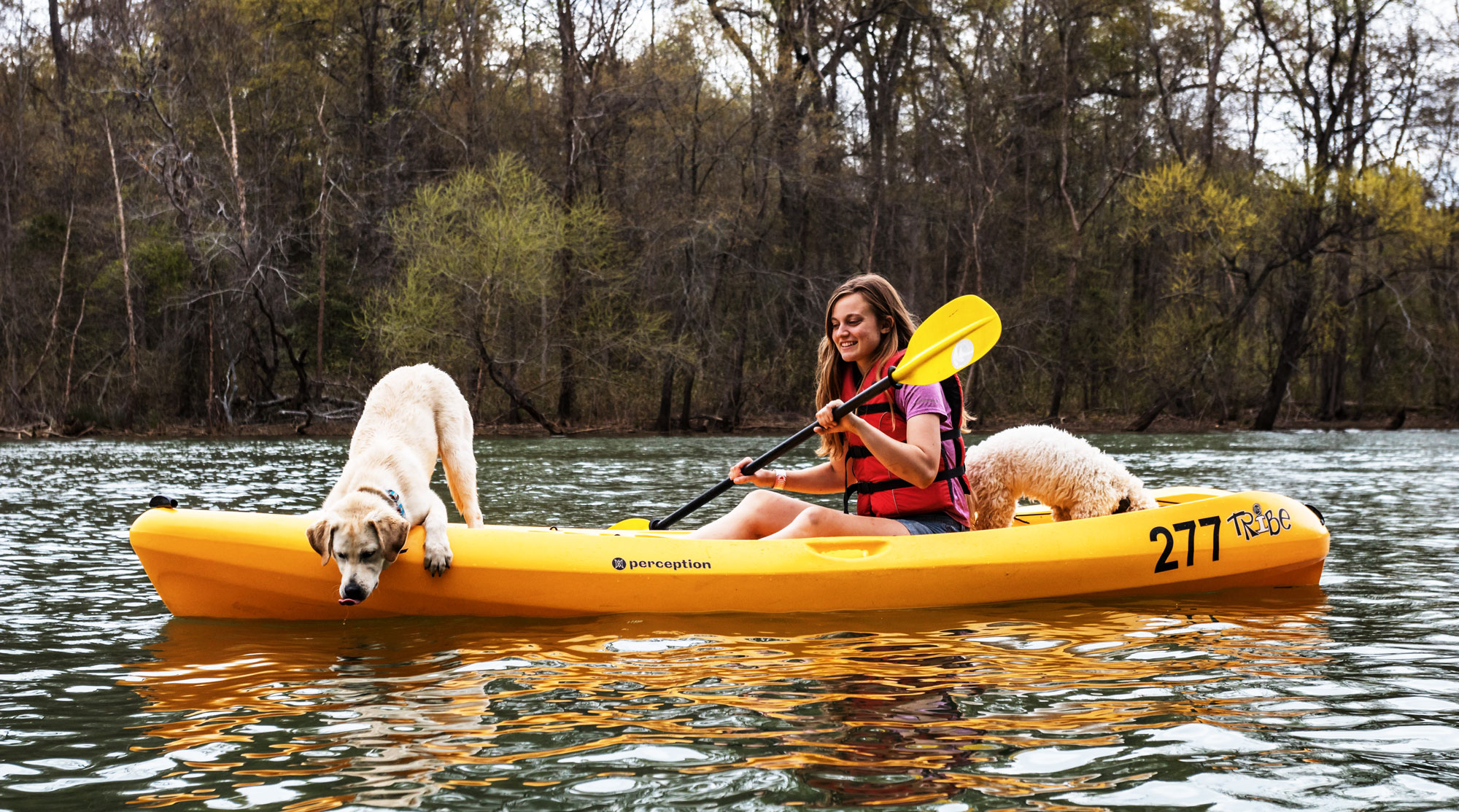 Howl at the moon - kayak adventure with your dog