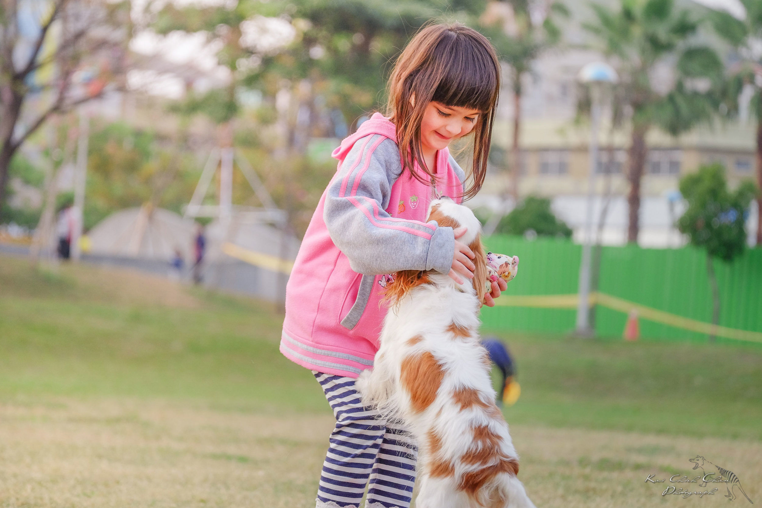 Pet owners having fun with their dogs in dog parks