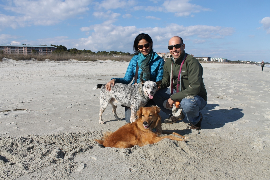 Dogs in beach adventure tours