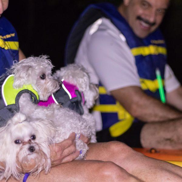 Happy Tails Tours dog friendly adventure