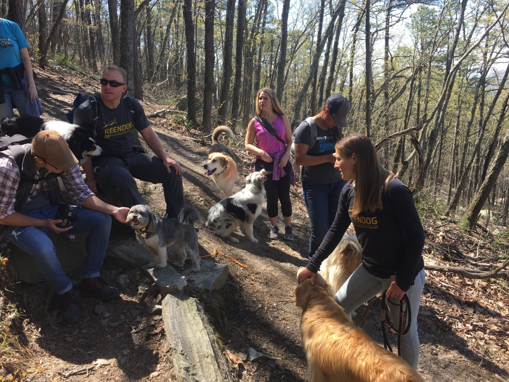 The Fox Tour with dogs at Yadkin Valley with Keendog group