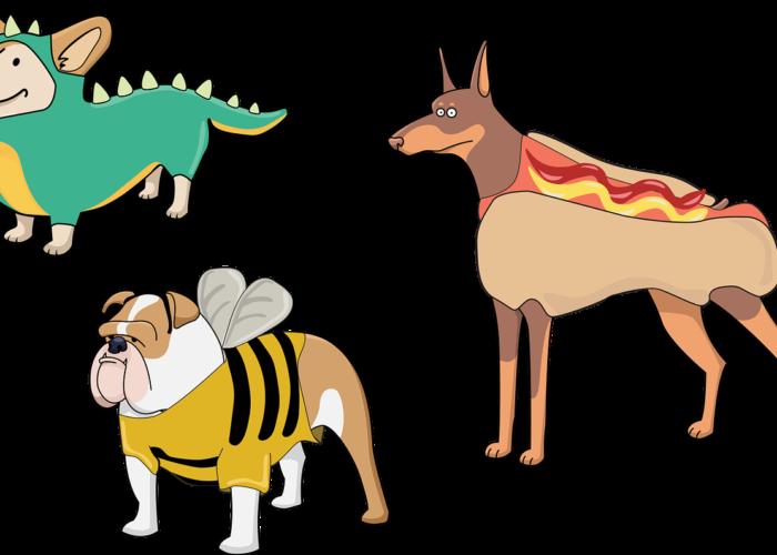 best dog costume contest