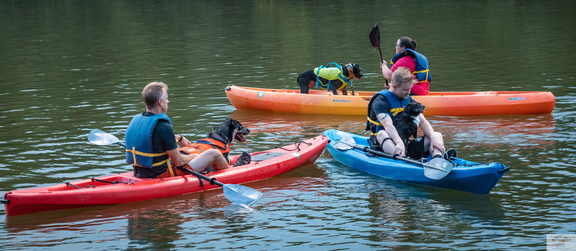 kayaking and SUP adventure in the Catawba River
