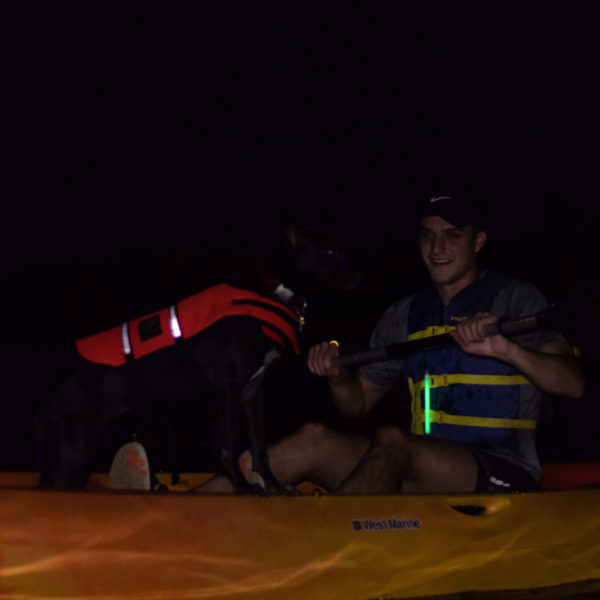 kayaking under the full moon with dogs