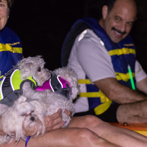 kayaking puppies under the full moon