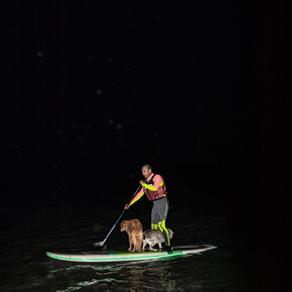 SUP adventure with dogs
