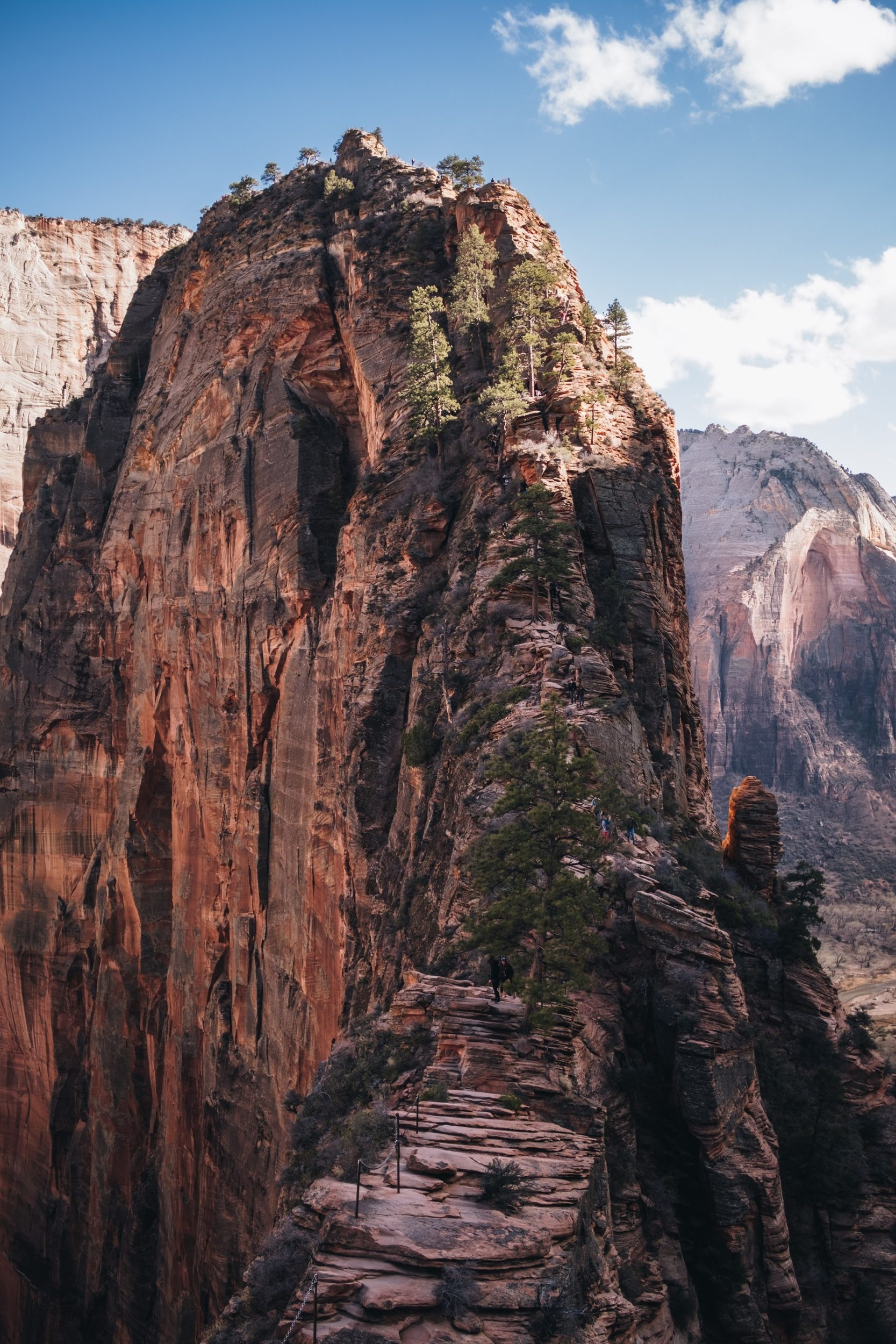sapan-patel-zion-national-park